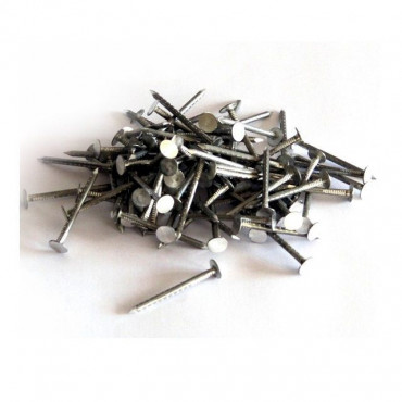 Aluminium Clout Nails 1kg