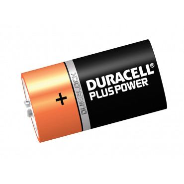 D Cell Alkaline Batteries